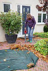 Using a leaf blower and sheet to gather up leaves from a patio