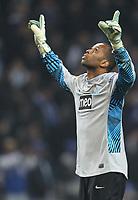 20120216: PORTO, PORTUGAL – UEFA Europa League 2011/2012 - 1/16 Final - 1st Leg: FC Porto vs Man. City.<br /> In photo: HELTON.<br /> PHOTO: PEDRO PEREIRA/CITYFILES