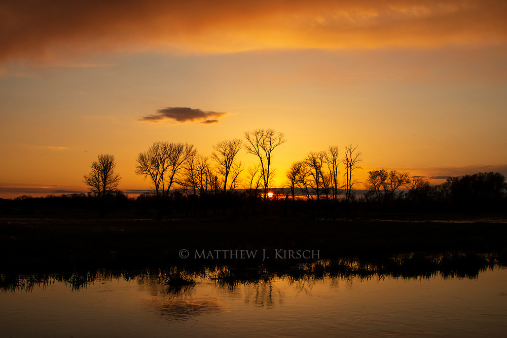 Trees Reflecting in Fox River During Sunset at Mitchell Park In Brookfield, Wisconsin During Spring. April 2017