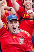Fan celebrating the first goal