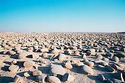 Israel, Negev. The Bulbus rock field in front of Mount Zin