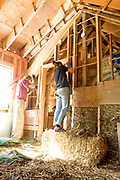 Alternative method homebuilder Lydia Dolman and her crew install insulation of a staw and mud slurry into the walls of a new Portland, Oregon home.