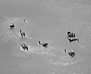"Ackroyd 00039-2. ""Horse seining at Astoria. Aerial. August 6, 1947"" caption on vintage print: ""Horse Seining on Lower Columbia river for salmon. 1/400 @ f11, yellow filter. Deceptive altitude with 15"" lens. Actually 300-400 feet of altitude"" (telephoto lens effect) The use of fixed gear, including seines, to take salmon, trout and steelhead was outlawed by an Oregon initiative in the 1948 general election, and after appeals it became effective September in 1950. Washington state abolished seining in 1935."