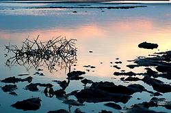 Il complesso produttivo delle saline è situato nel comune italiano di Margherita di Savoia (nome dato dagli abitanti in onore alla regina d'Italia che molto si adoperò nei confronti dei salinieri) nella provincia di Barletta-Andria-Trani in Puglia. Sono le più grandi d'Europa e le seconde nel mondo, in grado di produrre circa la metà del sale marino nazionale (500.000 di tonnellate annue).All'interno dei suoi bacini si sono insediate popolazioni di uccelli migratori e non, divenuti stanziali quali il fenicottero rosa, airone cenerino, garzetta, avocetta, cavaliere d'Italia, chiurlo, chiurlotello, fischione, volpoca..Arbusti nelle acque di un bacino. Quello che sembra fango è in realtà sale misto a fango che, una volta evaporata completamente l'acqua, verrà raccolto, lavato e inscatolato per la commercializzazione.