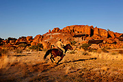 Horse riding in Gondwana Canon Park, a 100,000 hectare private reserve.
