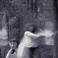 Ghosts in the Redwoods #2