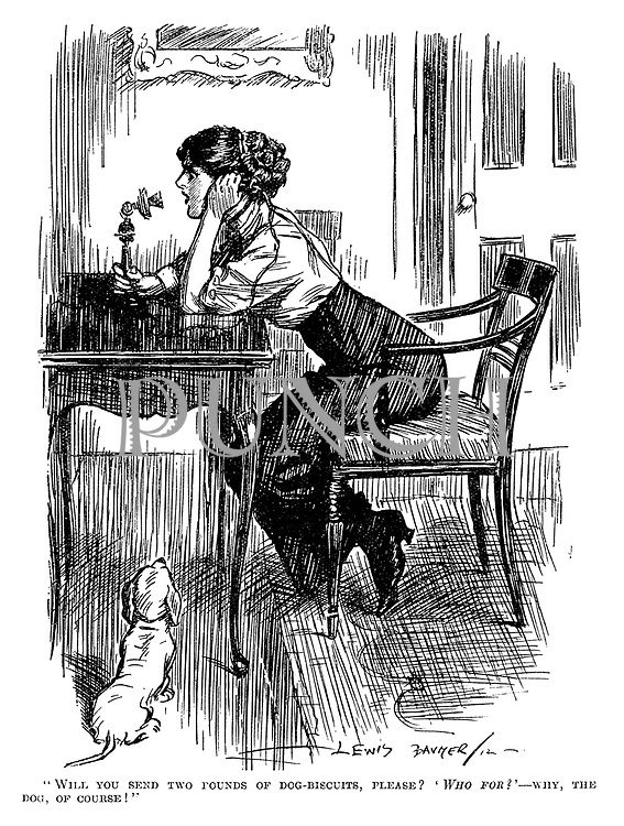 """""""Will you send two pounds of dog-biscuits, please? 'Who for?'—Why the dog, of course!"""""""