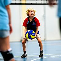 ROOKIE serie.<br /> Nederland, Haarlem, 19-09-2015.<br /> Volleybal, Mini's toernooi, CMV Niveau 2, Haarlem<br /> Foto : Klaas Jan van der Weij