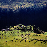 Family farm and ricedd paddies climb steep hillsides in the foothill of Annapurna in Nepal.