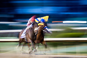 November 1-3, 2018: Breeders' Cup Horse Racing World Championships. Rocketry and jockey Joel Rosario win the Marathon Stakes race against Dabster and jockey Joe Talamo