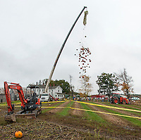 Moulton Farm's annual great pumpkin drop.  (Karen Bobotas/for the Laconia Daily Sun)