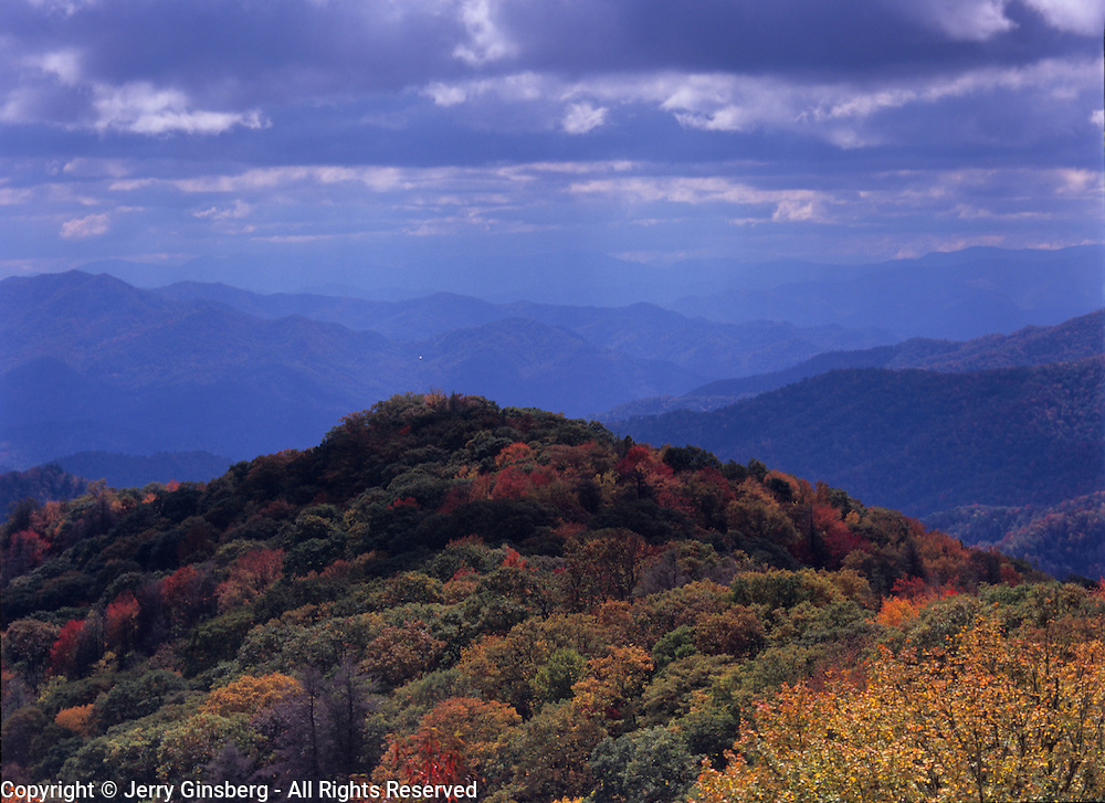 Brilliant autumn colors paint the trees in in Great Smoky Mountains National Park, NC.