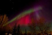Northern lights or aurora in city<br /> Winnipeg<br /> Manitoba<br /> Canada