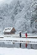 Scenic winter landscape with two women walking under umbrellas, Shirakawa-go, Japan
