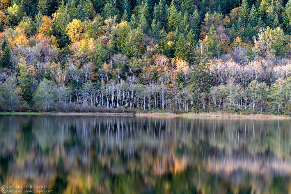 "Fall foliage colours reflect on the surface of Deer Lake in Sasquatch Provincial Park near Harrison Hot Springs, British Columbia, Canada. Photographed from ""The Point"" at Deer Lake near the Bench Campground."