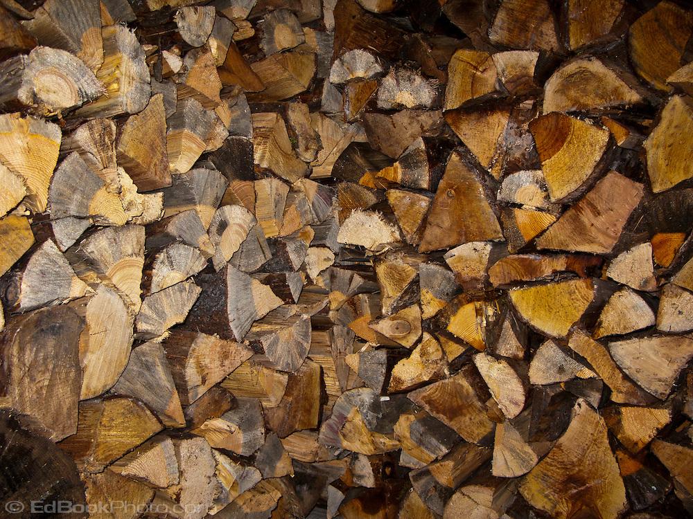 stacked Bigleaf maple firewood
