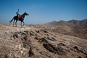 RIder and Mahwari horse on an outride in India.