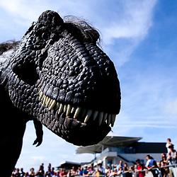 Dino Family Raceday