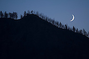 The crescent moon illuminates a tree covered ridge in the Frank Church - River of No Return Wilderness, Idaho.