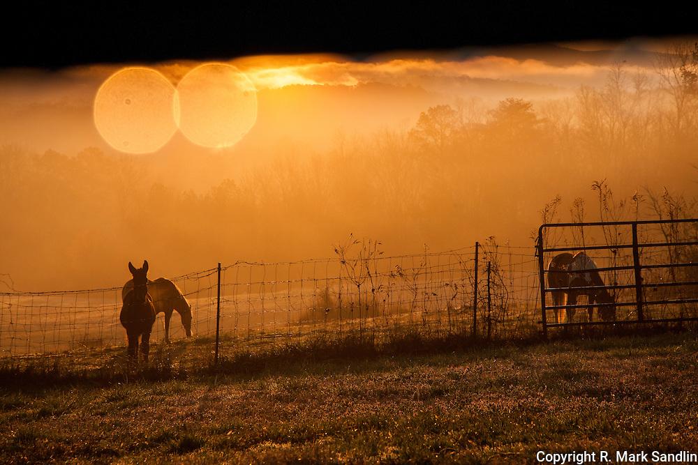 sunrise logan martin dam rd