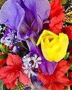 Floral arrangement, Iris, Tulip, Azalea