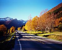 Fantasy road.<br /> Foto: Svein Ove Ekornesvåg