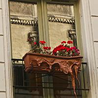 A Parisian planter.