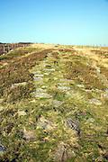 Roman road locally called Wade's Causeway crossing Wheeldale Moor, North Yorkshire Moors, England