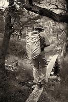 Crossing a Creek on a Log Footbridge in Patagonia. Hike from Hosteria El Pilar in El Chalten to El Mirador and Laguna Torre. Image taken with a Nikon D3x and 50 mm f/1.4G lens (ISO 100, 50 mm, f/4, 1/400 sec). Day 7 of a Photography workshop in Patagonia workshop with Thom Hogan..