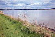 Riverside footpath, River Deben, Falkenham, Suffolk, England