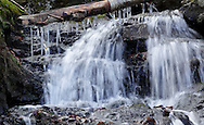 Mountainville, New York - Icicles hang off the trunk of a fallen tree over Baby Brook on on Schunnemunk Mountain on Nov. 28, 2010. The waterfall is off the Jessup Trail.