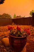 Smoke rolls in over neighborhood as the sun rises.