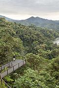 Viewing platform, Mashpi Lodge, Cloud Forest, Mashpi Reserve, Distrito Metropolitano de Quito, Ecuador