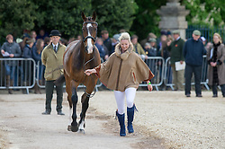 Spence Georgie, (GBR), WII Limbo<br /> First Horse Inspection - Mitsubishi Motors Badminton Horse Trials <br /> Badminton 2015