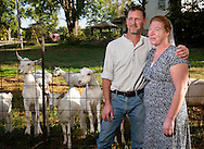 8 OCT. 2015 -- BLOOMSDALE, Mo. -- Baetje Farms LLC owners Steve Baetje (left) and his wife Veronica Baetje pose for a photograph with their goats at the farm in Bloomsdale, Mo., Thursday, Oct. 8, 2015. Goat cheeses made at Baetje Farms have won major national awards and the respect of cheese aficionados across the country. The Baetjes have also received attention for the packaging of their cheeses, which include Biblical references reflective of their Mennonite faith. Photo © copyright 2015 Sid Hastings.