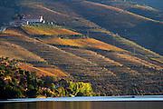 douro river and steep vineyards view from pinhao quinta do seixo sandeman douro portugal