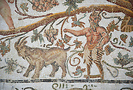 Detail of a Roman mosaics design depicting Silenus and Cupids showing Pan and a goat, from the House of Sienus, ancient Roman city of Thysdrus. 3rd century AD. El Djem Archaeological Museum, El Djem, Tunisia. .<br /> <br /> If you prefer to buy from our ALAMY PHOTO LIBRARY Collection visit : https://www.alamy.com/portfolio/paul-williams-funkystock/roman-mosaic.html . Type - El Djem - into the LOWER SEARCH WITHIN GALLERY box. Refine search by adding background colour, place, museum etc<br /> <br /> Visit our ROMAN MOSAIC PHOTO COLLECTIONS for more photos to download as wall art prints https://funkystock.photoshelter.com/gallery-collection/Roman-Mosaics-Art-Pictures-Images/C0000LcfNel7FpLI