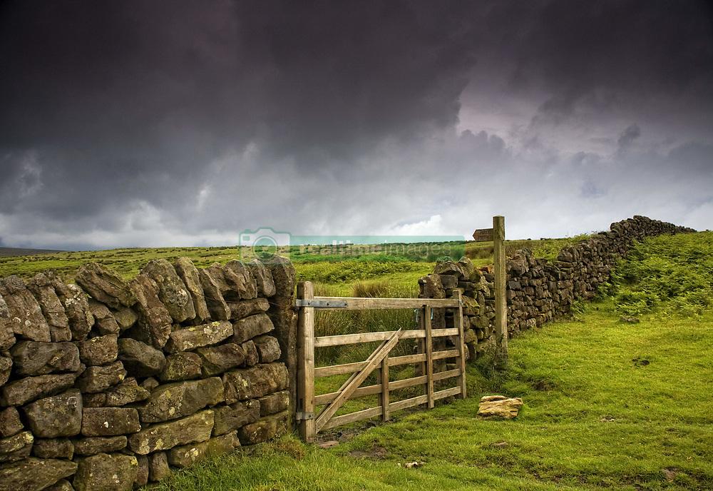 July 21, 2019 - Stone Fence, Yorkshire, England (Credit Image: © John Short/Design Pics via ZUMA Wire)