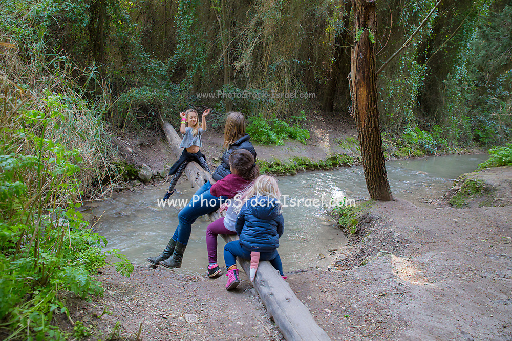 Family is playing and resting near the running water of Gahar stream, Israel Model release available