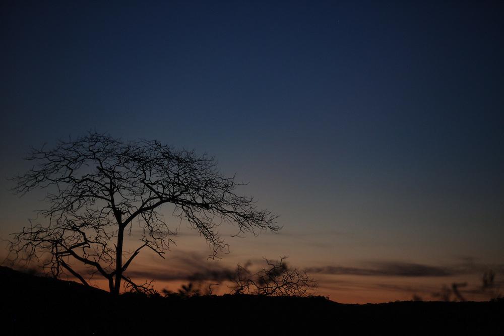Canaa dos Carajas_PA, Brasil.<br /> <br /> Floresta Nacional de Carajas (Flona) em Canaa dos Carajas, Para. Na foto Serra Azul.<br /> <br /> The Carajas National Forest in Canaa dos Carajas, Para. In this photo Serra Azul.<br /> <br /> FOTO: JOAO MARCOS ROSA / NITRO