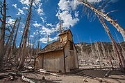 Dead trees around Horseshoe Lake. Higher than normal concentrations of CO2 are responsible for killing approx. 120 acres of trees next to Horseshoe Lake and elsewhere on Mammoth Mountain. Inyo National Forest, California, USA