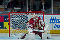 REGINA, SK - MAY 19: Evan Fitzpatrick #31 of Acadie-Bathurst Titan makes a block save against the Swift Current Broncos at the Brandt Centre on May 19, 2018 in Regina, Canada. (Photo by Marissa Baecker/CHL Images)