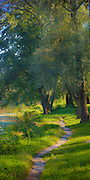 Tranquil riverside pathway along the Psel River in Sumy, Ukraine