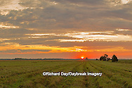 63893-02916 Sunrise at Prairie Ridge State Natural Area, Marion County, IL
