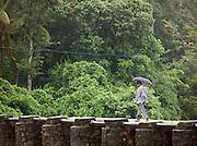 Locals cross a river over a dam in Kerala, India