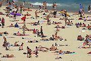 Hundreds of beach-goers bask in the sun at Bondi Beach in Sydney, Australia.