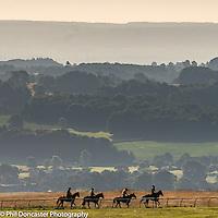 Beautiful summer morning on Middleham Gallops