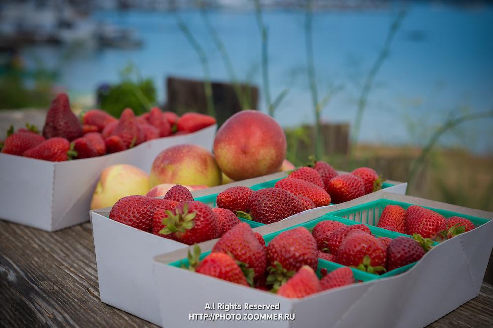 Basket of strawberries and nectarines form Sausalito farmers market, California, USA