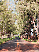 Dusty tarmaked road towards Maunalua Bay on O'Ahu, Hawai'i