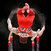 Brinn Bevan of Great Britain performs on the Parallel Bars at the 46th FIG Artistic Gymnastics World Championships in Glasgow, Britain, 25 October 2015.